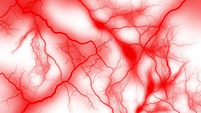 効率的に酸素を身体中に行き渡らせるために「毛細血管」を発達させよう!